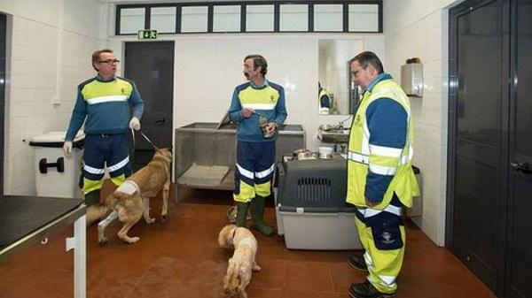 Apresentação Pública da Ambulância de Socorro Animal – 4 de julho, 10h, Casa dos Animais de Lisboa